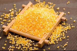 玉米糁加工